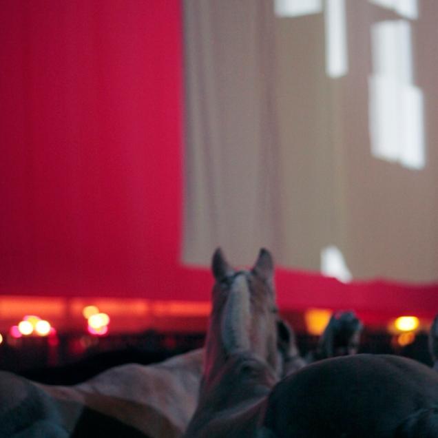 Coulisses avant l'entrée en scène au Grand Palais de Paris - Emma P.