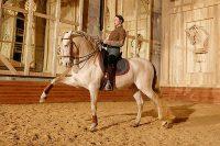 Académie Equestre de Versailles