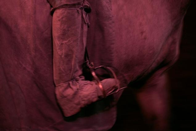 Ecuyer de l'Académie Equestre - Emma P.