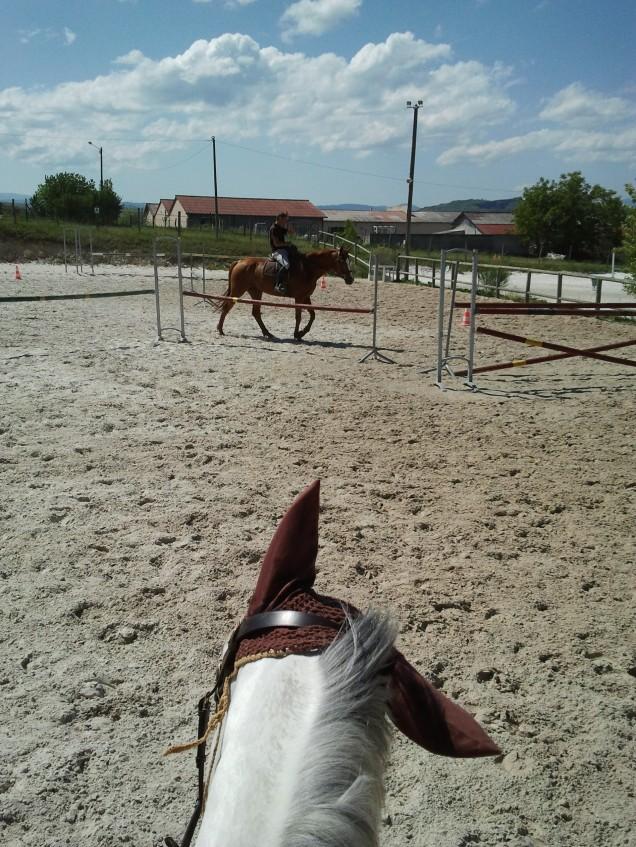 Obstacles en vue, Kenji voit plusieurs options - Aurélia P.