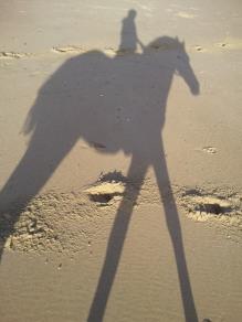 Côte sauvage de Royan La Palmyre dans l'ombre de mon cheval - Aurélia P.