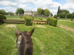 Cross de Pompadour entre les oreilles de mon cheval - Aurélia P.