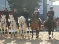 L'équitation de travail