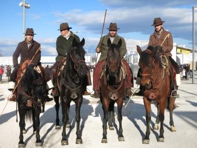 Cavaliers italien et leurs chevaux de la Maremma