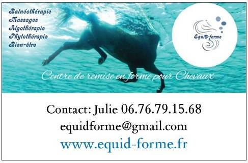Equid Forme